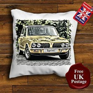 Triumph Dolomite Pillow